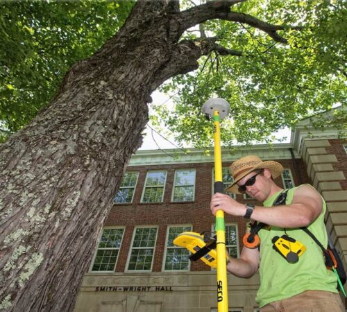 Arborist Consultations-Sun City FL Tree Trimming and Stump Grinding Services-We Offer Tree Trimming Services, Tree Removal, Tree Pruning, Tree Cutting, Residential and Commercial Tree Trimming Services, Storm Damage, Emergency Tree Removal, Land Clearing, Tree Companies, Tree Care Service, Stump Grinding, and we're the Best Tree Trimming Company Near You Guaranteed!