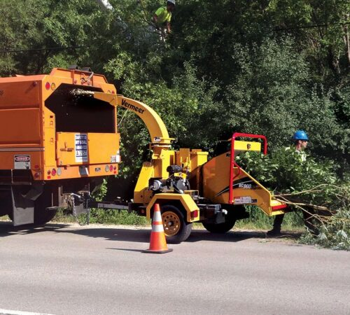 Commercial Tree Services-Sun City FL Tree Trimming and Stump Grinding Services-We Offer Tree Trimming Services, Tree Removal, Tree Pruning, Tree Cutting, Residential and Commercial Tree Trimming Services, Storm Damage, Emergency Tree Removal, Land Clearing, Tree Companies, Tree Care Service, Stump Grinding, and we're the Best Tree Trimming Company Near You Guaranteed!