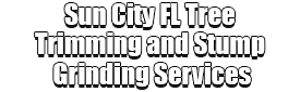 Sun City FL Tree Trimming and Stump Grinding Services Logo-We Offer Tree Trimming Services, Tree Removal, Tree Pruning, Tree Cutting, Residential and Commercial Tree Trimming Services, Storm Damage, Emergency Tree Removal, Land Clearing, Tree Companies, Tree Care Service, Stump Grinding, and we're the Best Tree Trimming Company Near You Guaranteed!